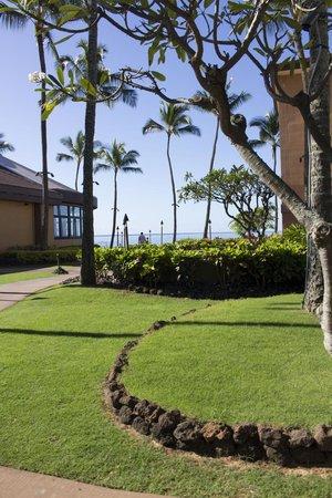 Sheraton Kauai Resort : Hotel Grounds