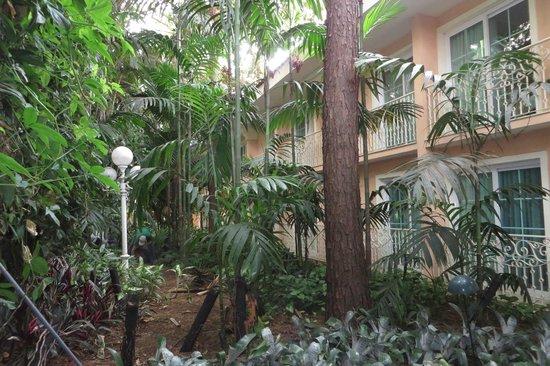 Royal Palm Plaza Resort: Jardins muito bem cuidados. Super agradável.