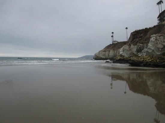 SeaCrest OceanFront Hotel: Beach area