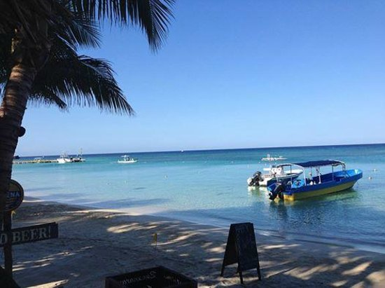Bananarama Beach and Dive Resort: The beach view