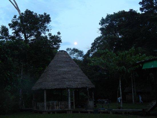 Shiripuno Amazon Lodge: moon over Shiripuno