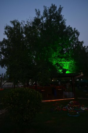 Hotel Dalyance : Another of the garden/bar