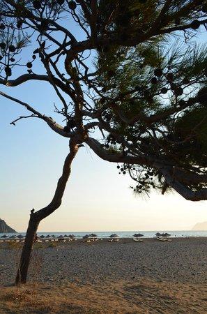Hotel Dalyance : Beach at sundown