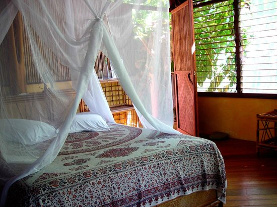 Iguana Lodge: Room at one of the Casitas