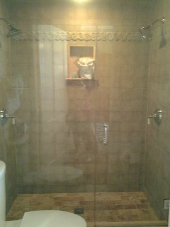Bayfront Westcott House Bed & Breakfast : A seperate shower with two heads.