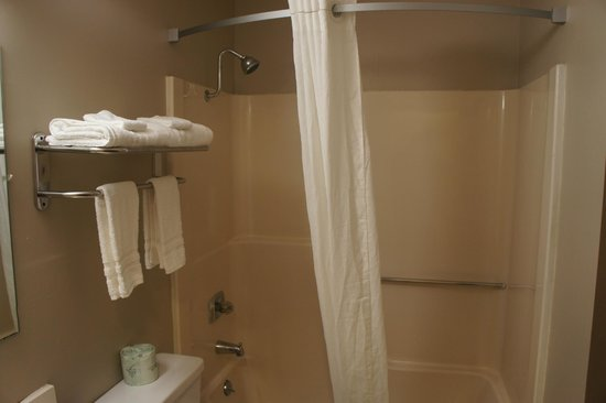 Super 8 Fremont NE: LUXURIOUS BATHROOM