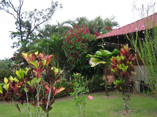 Hotel La Pradera : The cabana