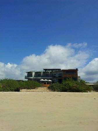 Iguana Crossing : View from the Beach to the hotel