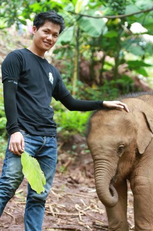 Patara Elephant Farm - Private Tours : Most cute baby ever.