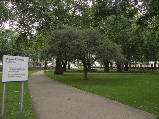 Imperial College Accommodation Prince's Gardens: El jardín común que está el medio del predio