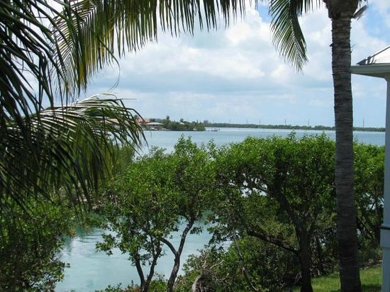 Hawks Cay Resort: View from Master Bedroom