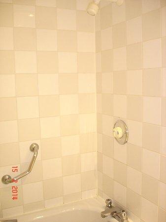 Holiday Inn Hull Marina: Shower