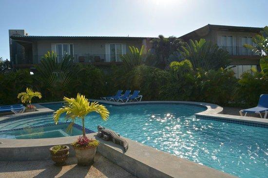 Almond Tree Hotel Resort: Hotel from Pool side
