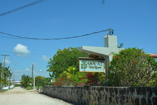 Almond Tree Hotel Resort: Entrance