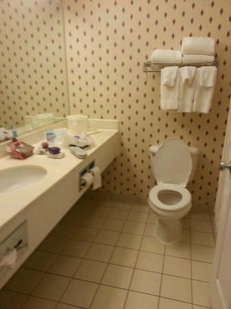 Comfort Suites Rochester: bathroom