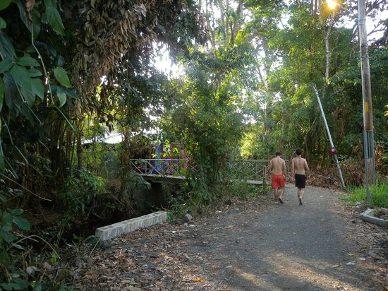 La Posada Private Jungle Bungalows: walk to beach