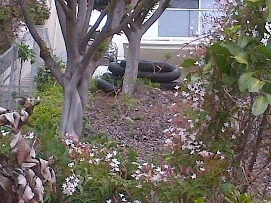 Holiday Inn Express Newport Beach: Hillside in back of multi-million $$ home behind hotel - see black tubing