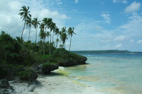 Mare Photos Featured Pictures Of Mare Loyalty Islands