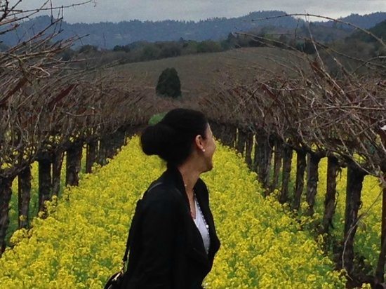 Frog's Leap Winery: Amazing mustard flowers