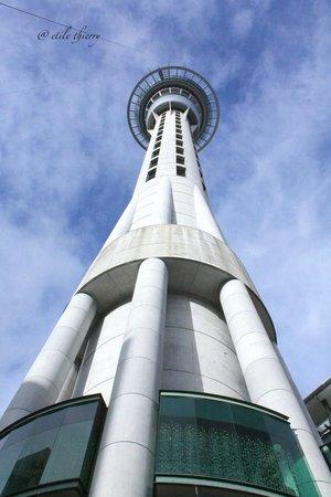 Sky City Casino: Vue d'en bas