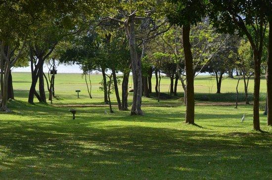 Amaya Lake: Grounds