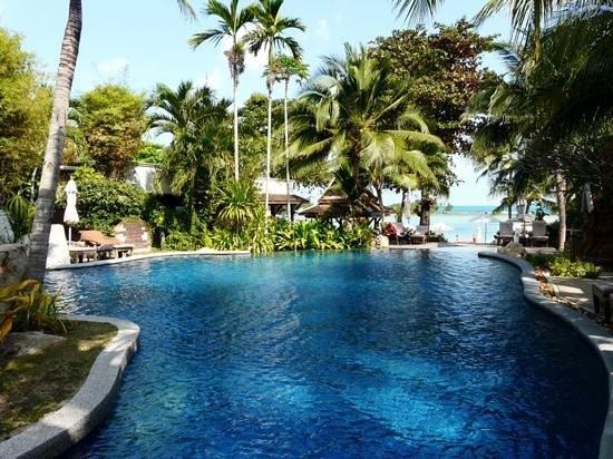 Muang Samui Spa Resort : Vue sur la piscine et la plage