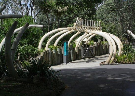 Auckland Zoo : L'entrée du parc