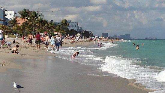 Villa Sinclair Beach Suites & Spa : Beautiful Beach- Swim even in February
