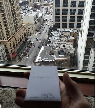 Park Hyatt Chicago: view