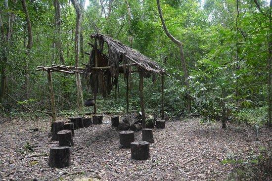 Windy Hill Resort : Chiclero Camp