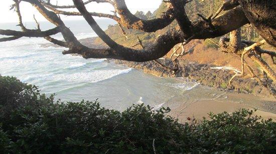 Yachats coastline: Yachats