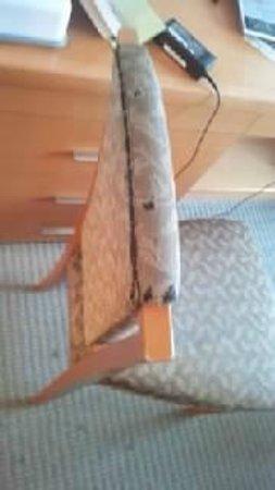 KKR Hotel Kanazawa : 椅子がボロボロ