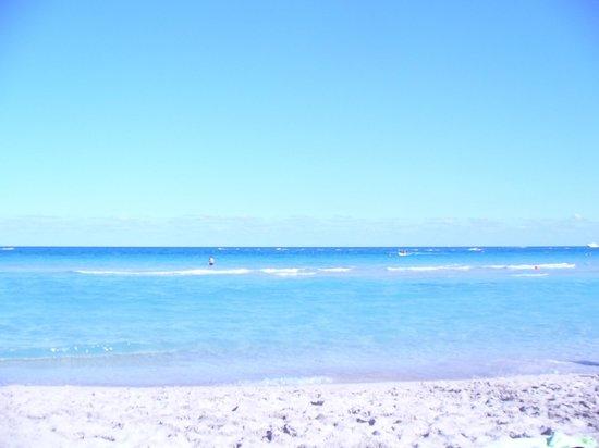 Holiday Inn Miami Beach: The ocean