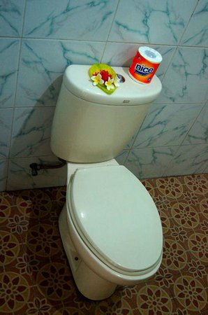 Joli Homestay: The toilet. And yes, we have toilet paper.