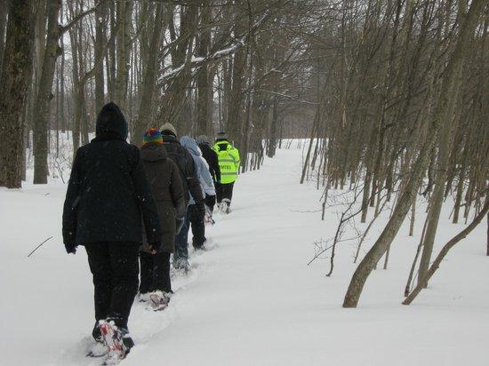 Carriage Hills Resort : Snow shoe adventure