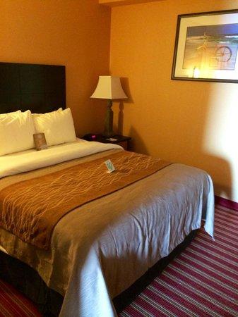 Comfort Inn & Suites Oceanfront : Nice Firm Queen size bed