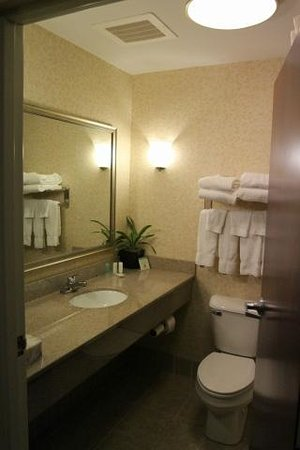 Comfort Suites Dayton: Bathroom, still kind of new.