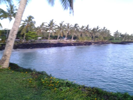 Amoa Resort: Siufaga waterfront
