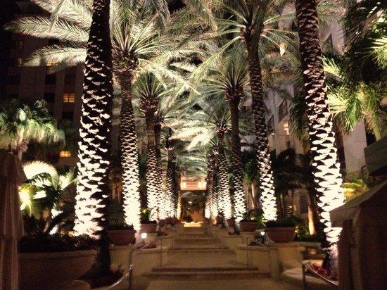 Loews Miami Beach Hotel : The walk down to the pool area