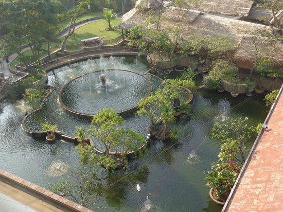 Hilton Colombo: pond