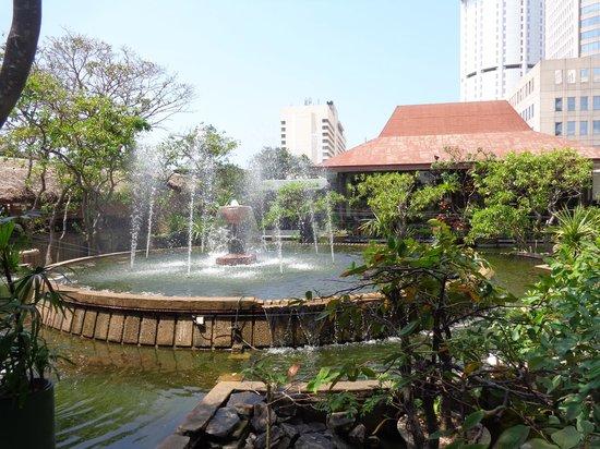 Hilton Colombo: pond 2