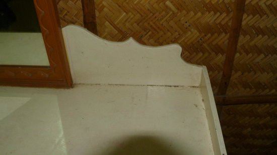 Ashtamudi Homestay: Dust gathered on furniture