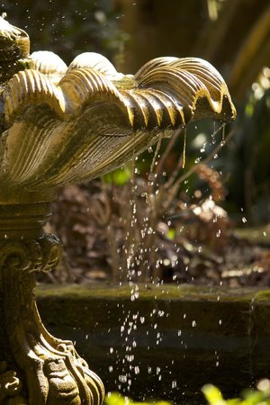 Capturing Savannah - Photography Tours : Using high shutter speed on a garden fountain