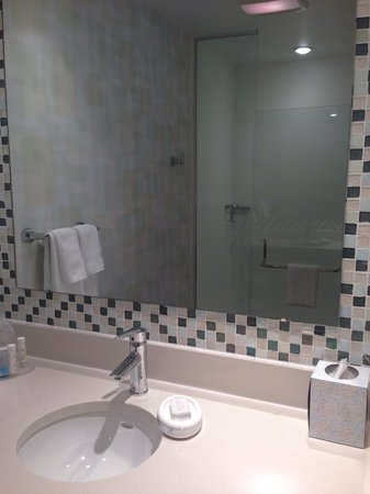 SpringHill Suites Houston Intercontinental Airport : Sink and shower