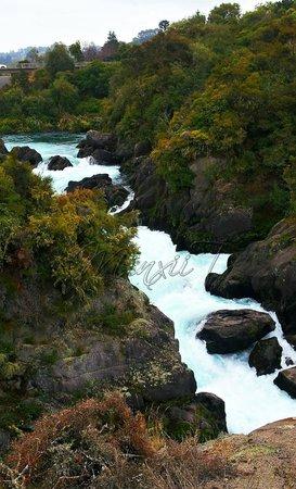 Aratiatia Rapids: Scenery complete