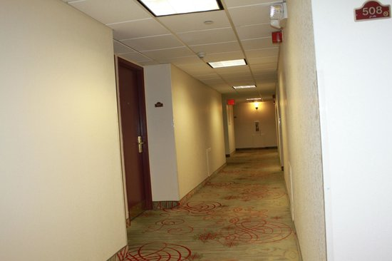 Holiday Inn Express El Paso - Central: Fifth floor hall view