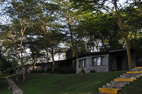 Sarova Lion Hill Game Lodge: Вид на коттеджи с номерами.