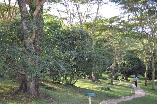 Sarova Lion Hill Game Lodge: отельная территория с парком