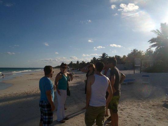 Coco Tulum : beach