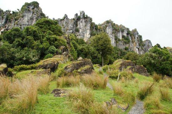 Hairy Feet Scenic Film Location Tour Waitomo: Cliffs